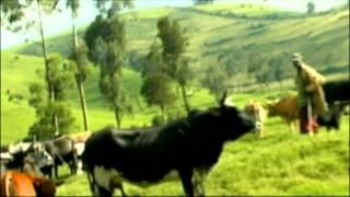 Amateka n' Amazina by' Inka, ibishyengo by' ABAGOGWE, RWANDA