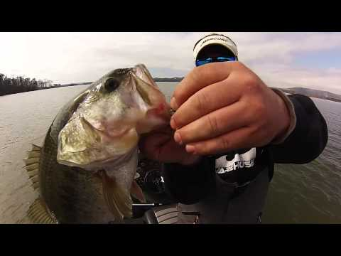 Lake Guntersville Traps & Rigs Bass Fishing
