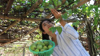 How To Make Passion Fruit Juice With Soda Water / Fresh Fruit Drink / Prepare By Countryside Life TV