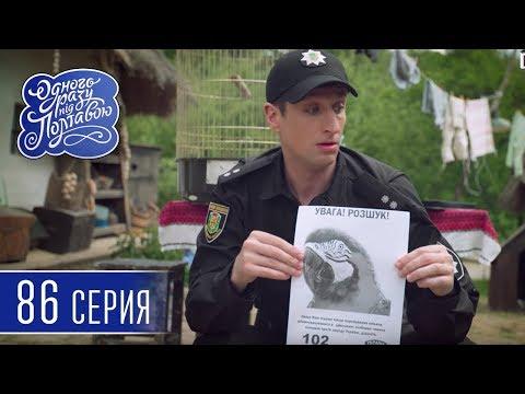 Однажды под Полтавой. Редкая птица - 5 сезон, 86 серия | Комедийный сериал 2018
