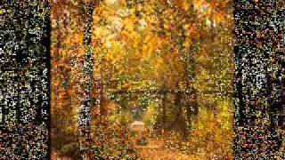 Kad Lisce Pada (When the leaves fall) MUSIC