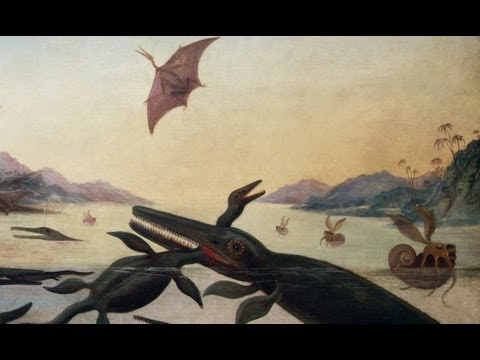Fossil hunter Mary Anning inspires art