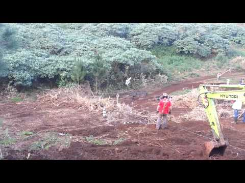 1.� Trial resist�ncia - Porto Moniz 2013