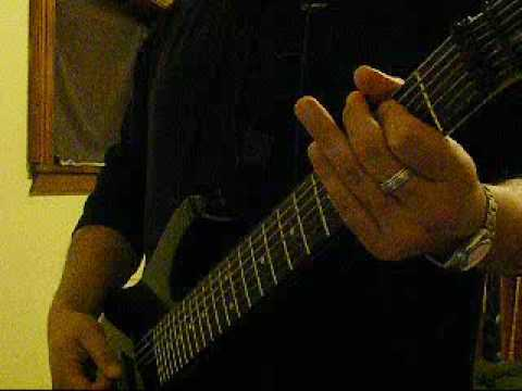 Fredrik Thordendals Special Defects - Sol Niger Within Excerpt - Guitar Cover