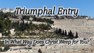Video: Where Jesus wept for Jerusalem (Triumphal Entry, Dominus Flevit) - HolyLandSite