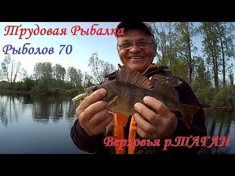 рыбалка на окуня в томской области