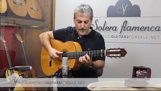 Manuel Reyes 1969 flamenco guitar for sale played by Pedro Javier González