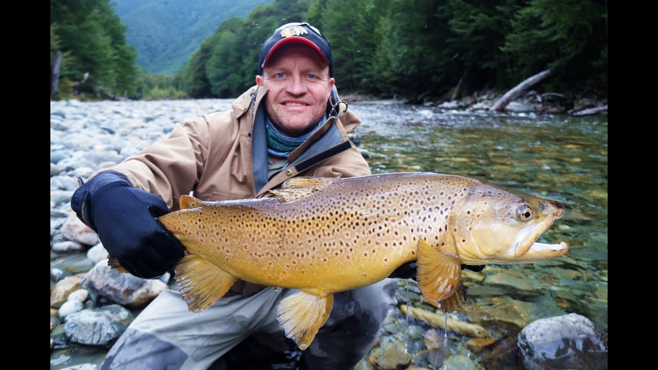 39 it 39 s all part of the story 39 fly fishing new zealand for New zealand fish