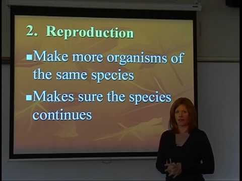 Biology - Characteristics of Living Things