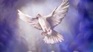 Vídeo 37 de Comunidade Católica Shalom