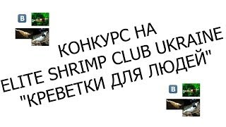 "Розыгрыш подарков Elite Shrimp-Club Ukraine. Конкурс ""Креветки для людей"""
