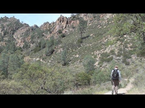 Pinnacles National Park: Condor Gulch Trail