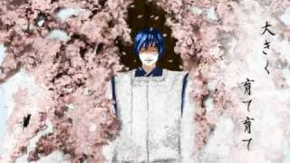 [KAITO] Winter Cherry Blossom [English Sub][Vocaloid]