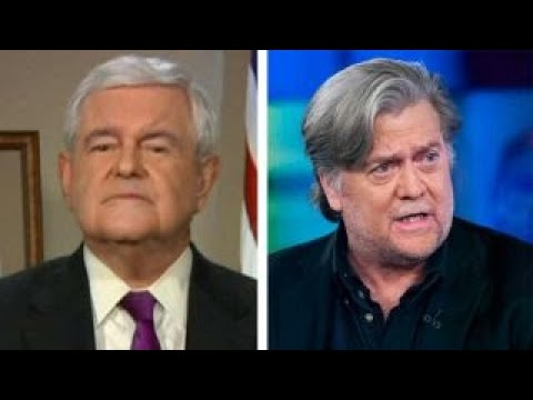 Newt Gingrich: Steve Bannon has the 'wrong strategy'