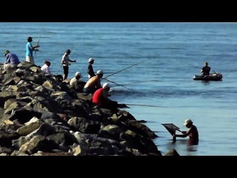 морская рыбалка в одессе 2016