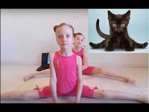 ЙОГА ЧЕЛЛЕНДЖ С ЖИВОТНЫМИ . Гимнастический челлендж с животными