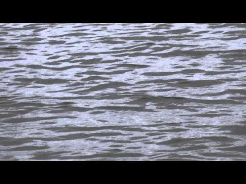 рыбалка в выборгском заливе видео