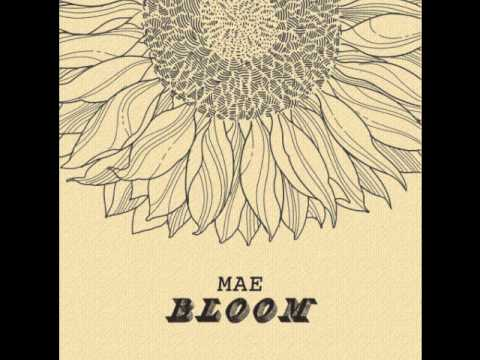 Mae - Bloom
