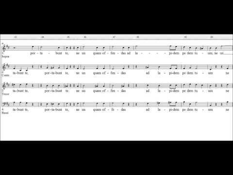 Johann Michael Haydn - Angelis suis Deus mandavit
