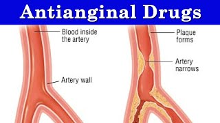 Antianginal Drugs Lesson