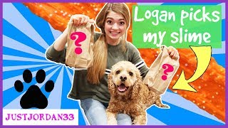 Dog Picks My Mystery Blind Bag Surprise Slime Ingredients In Real Life 2018 Challenge / JustJordan33