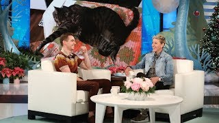 Download Lagu Dave Franco's Cats Took Over His Life Gratis STAFABAND