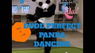 THE DUDE PERFECT PANDA DANCE