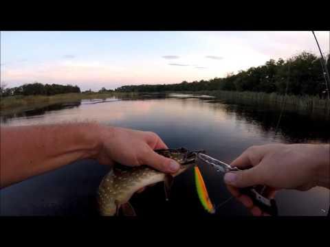 рыбалка в краснодарском крае 2016 видео