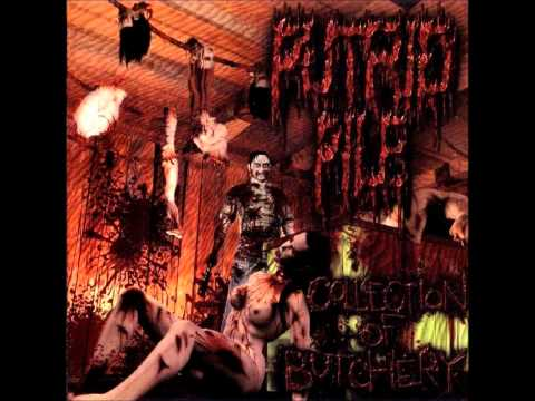 Putrid Pile - Gallery Of Horrors