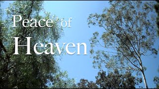 Peace of Heaven  ( Live Piano Violin Worship Prayer Prophetic Soaking Music )