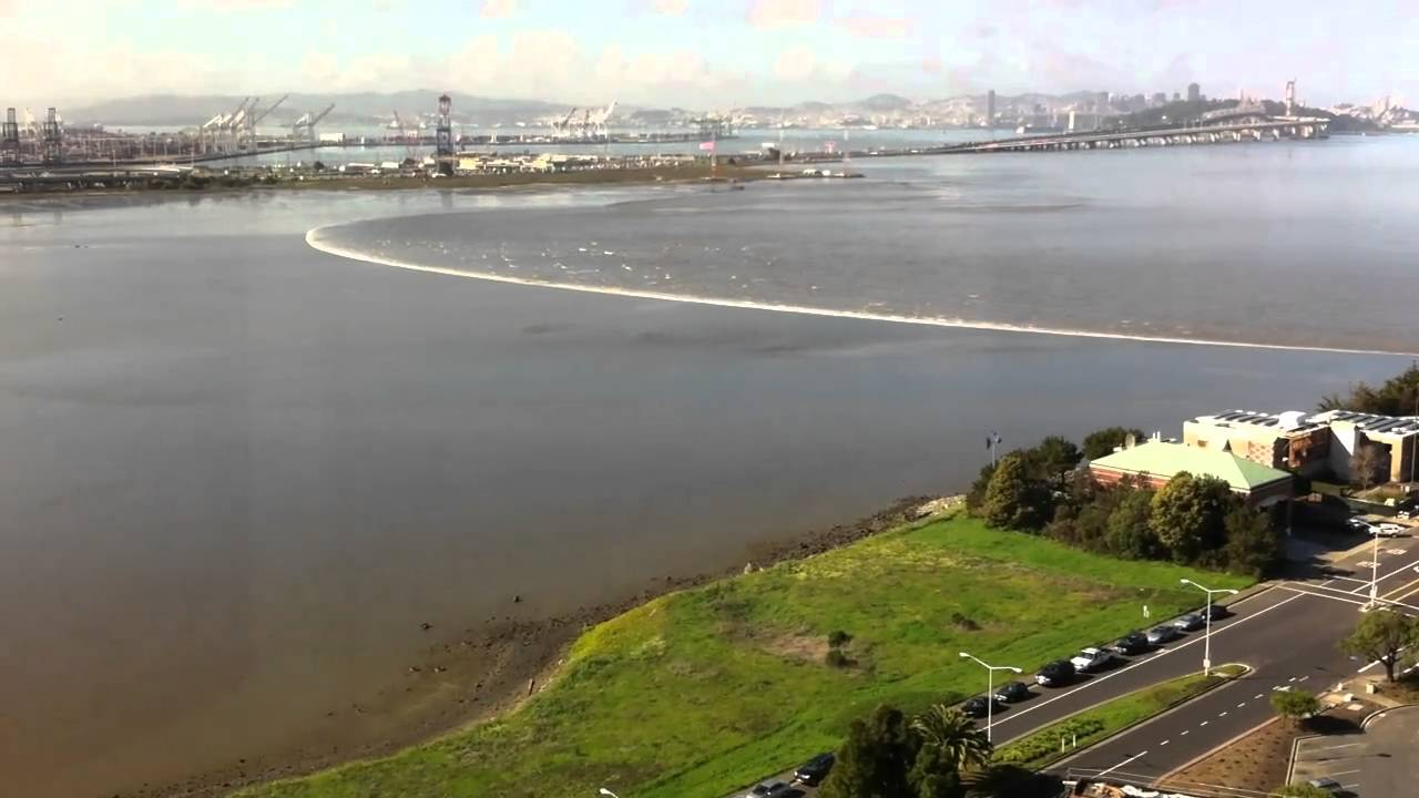 Japanese earthquake tsunami wave arrives in emeryville ca for Asian furniture emeryville ca