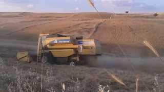new holland TC 56 (İPEK TARIM)