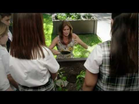 Desperate Housewives Season 8 Funny Quotes