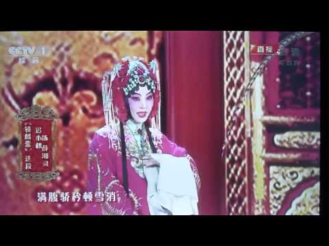 Peking Opera 2014 - Chinese New Year Eve TV Show