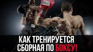 Сборная Украины по боксу. Открытая тренировка перед выездом на чемпионат мира 2015. 30/09/2015