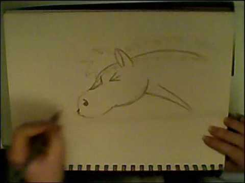 How to draw a sneezing horse! Video