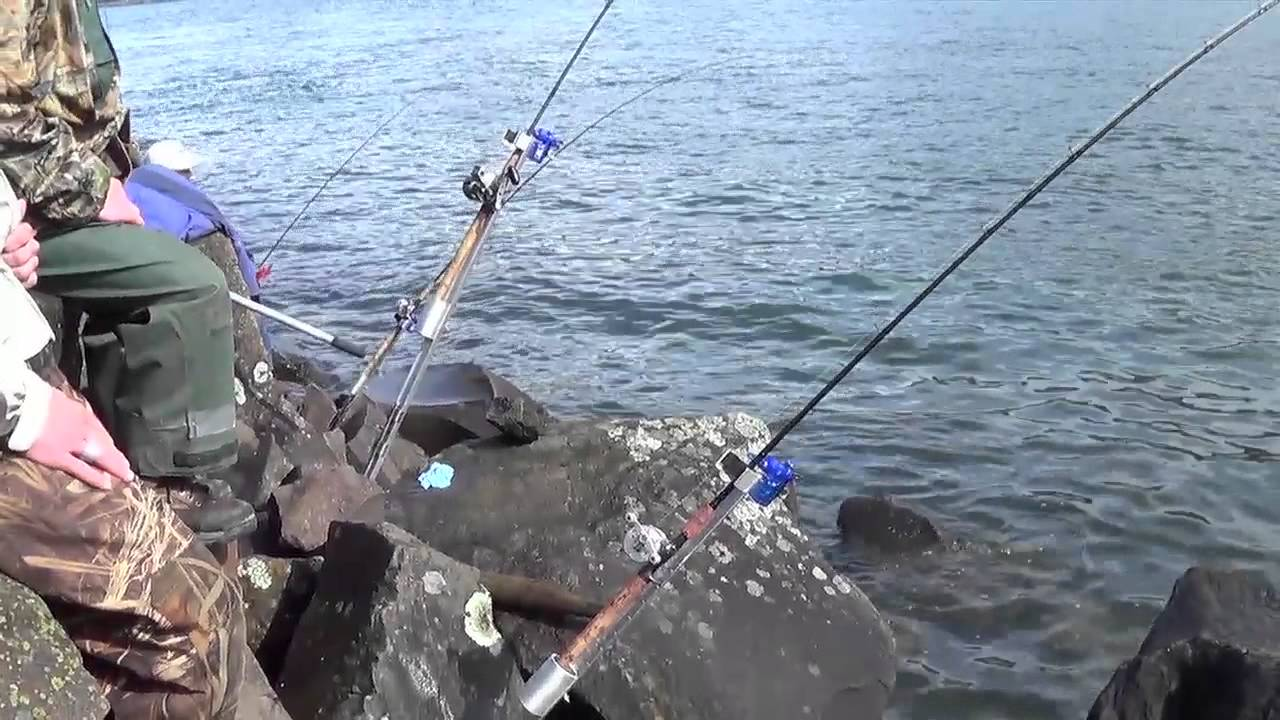 Rock fishing rod holder images for Fishing rod stand