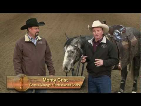 Ken McNabb Discovering The Horseman Within: Bits Part 1