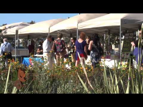 San Diego Regional Chamber of Commerce Business After 5 @ Waterfront Park