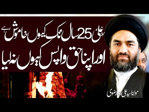 Hazrat Abu Bakr , Umar O Usman Sy Maula Ali a.s Ny Apny Haq Ky Liye Jang Kiun Na Ki?? | 4K