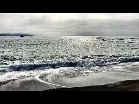 海と蝉の声とソルフェジオ周波数528Hz