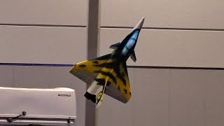INDOOR FLIGHT RC RAFALE LIGHTWEIGHT SCALE MODEL JET / Modll-Hobby-Spiel Leipzig 2016
