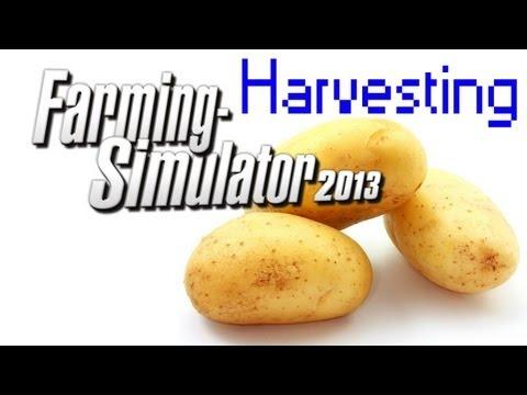 Colhendo Batatas - Farming Simulator 2013