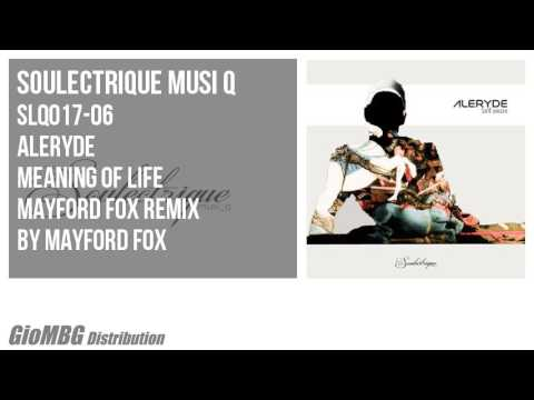 Aleryde - Meaning Of Life [Mayford Fox Remix]