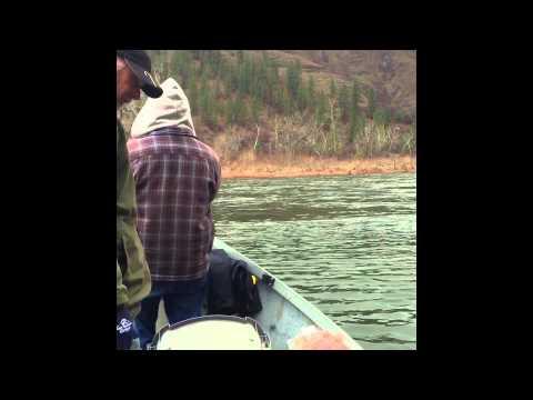 Clearwater Steelhead Fishing 2015