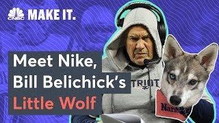 Meet Bill Belichick's Dog, Nike