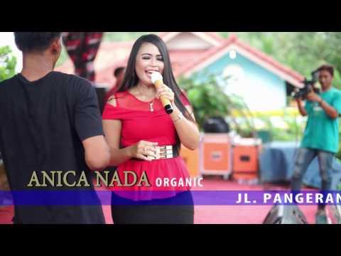DIAN ANIC - CINTA SENGKETA Live Subang. New Tarling 2017