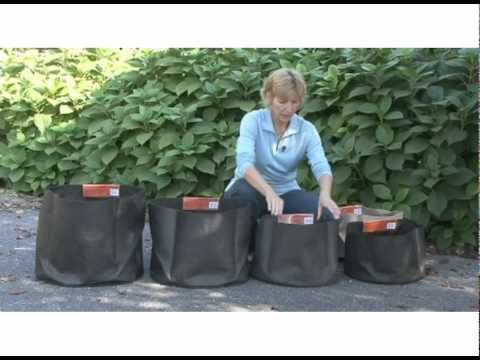 Container Gardening Made Easy With Smart Pots Youtube