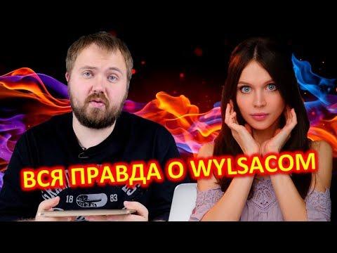ВСЯ ПРАВДА О Wylsacom - ВАЛЕНТИН ПЕТУХОВ