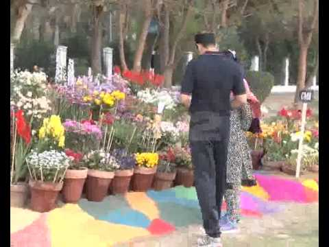 Pakistan Park 3 Days Flower Exhibition Started Walton Pkg By Fiza Noor City42